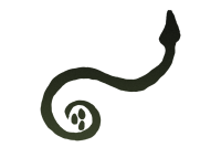 Gaulish Snake from Carnutes coin